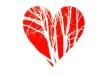 serce poz